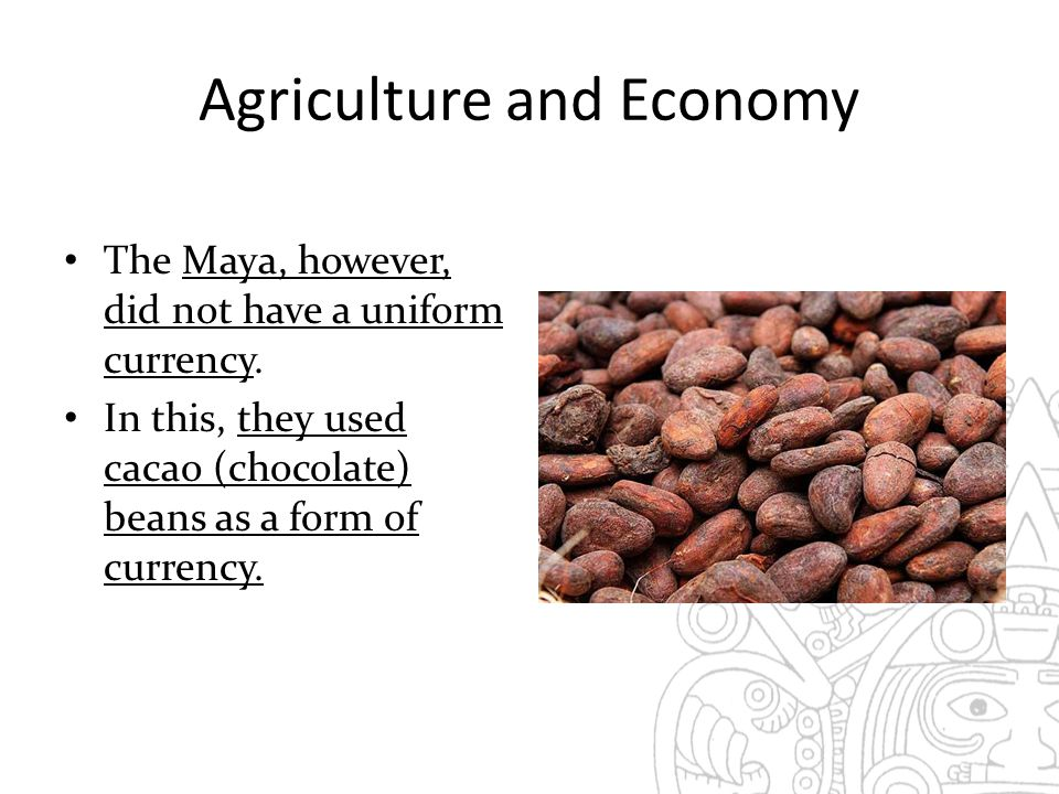Agriculture and Economy