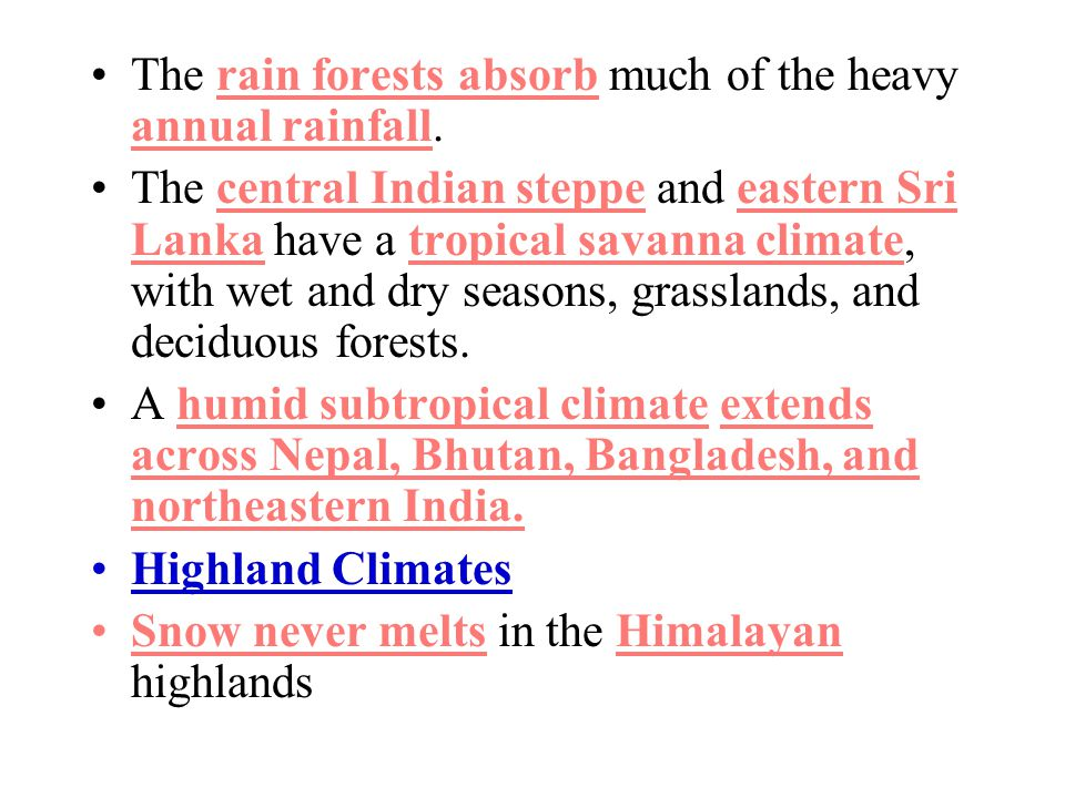 The rain forests absorb much of the heavy annual rainfall.