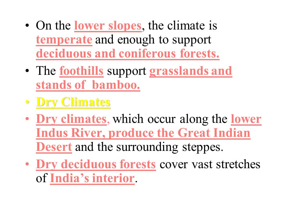 On the lower slopes, the climate is temperate and enough to support deciduous and coniferous forests.