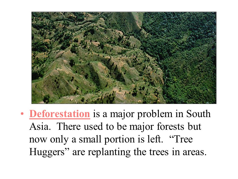 Deforestation is a major problem in South Asia