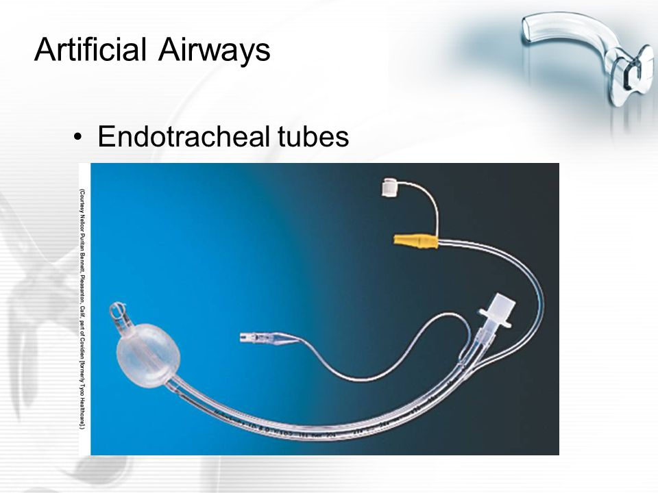 Care of the client with an artificial airway ppt video online.