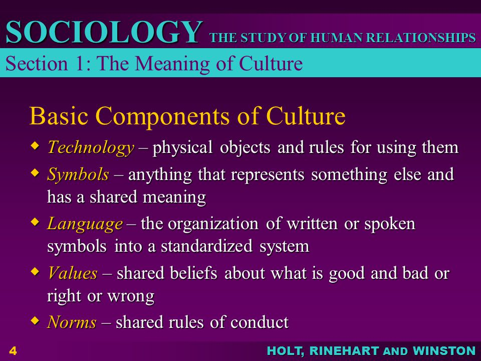 Basic Components of Culture