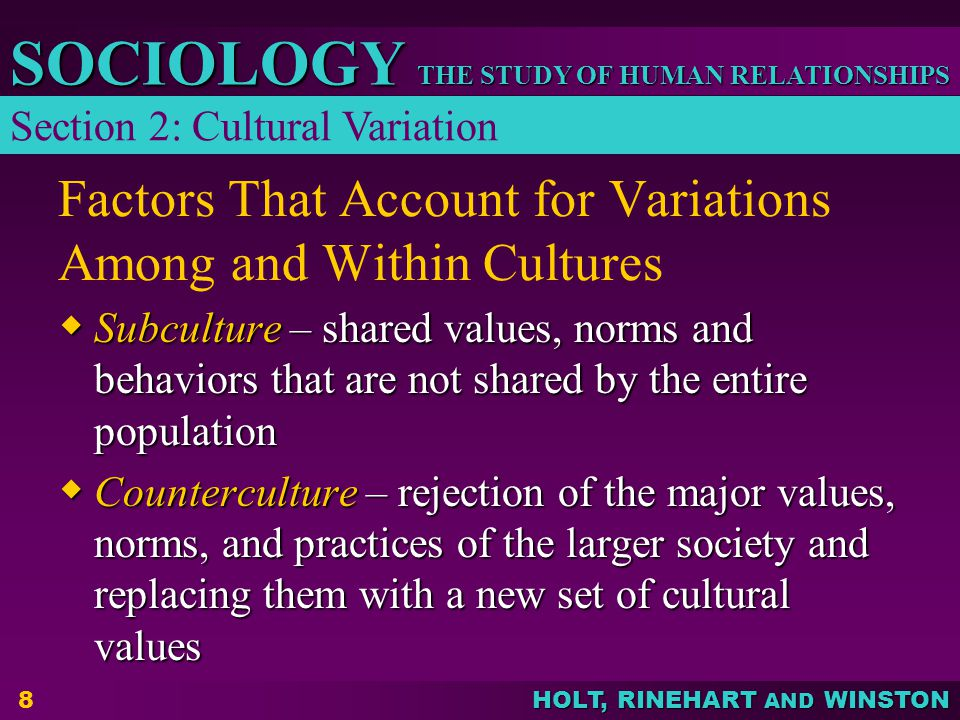 Factors That Account for Variations Among and Within Cultures