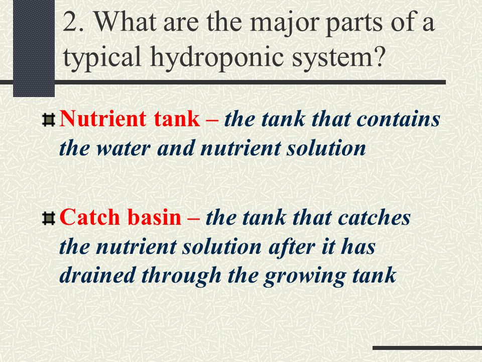 Introduction to Hydroponics - ppt download