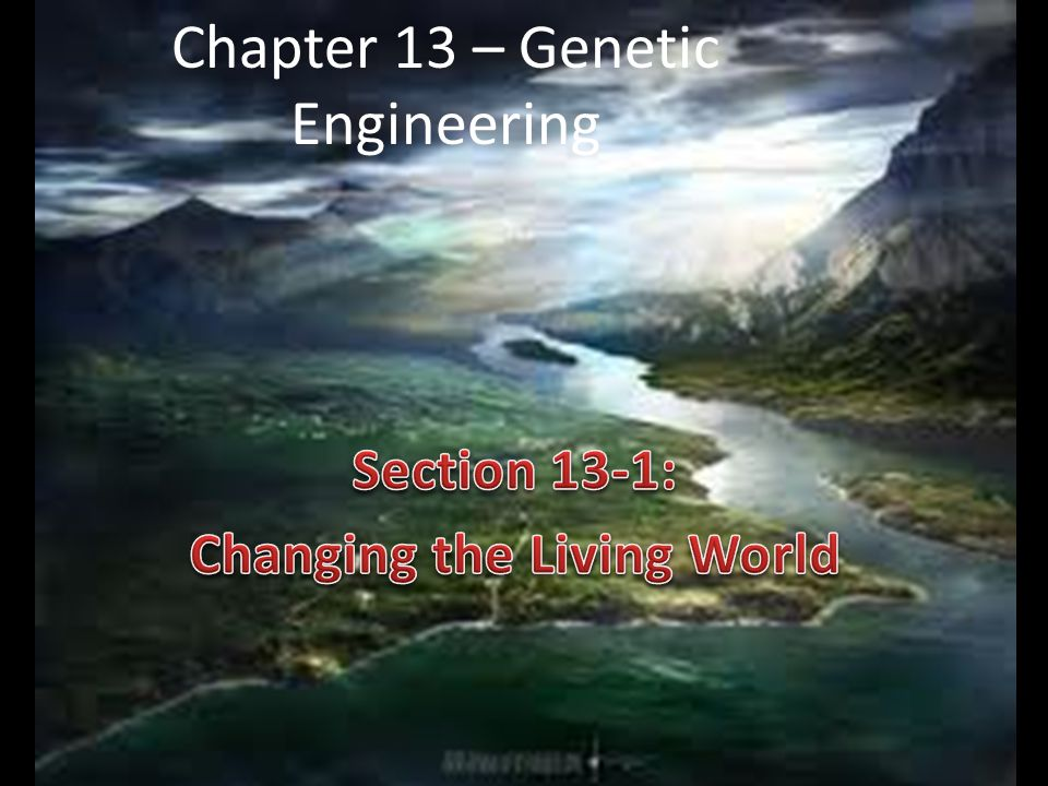 Chapter 13 – Genetic Engineering