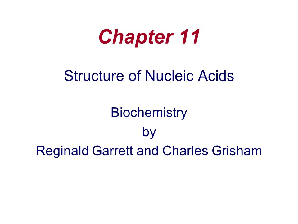 Chapter 11 Structure of Nucleic Acids Biochemistry by - ppt video ...
