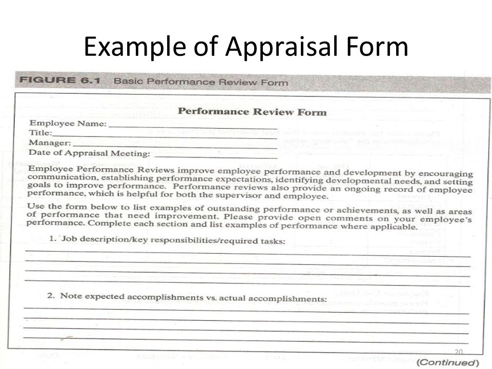 performance review form example