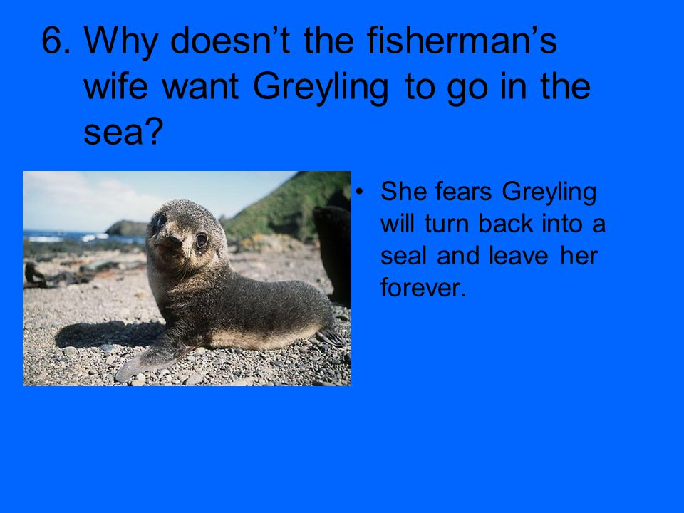 6. Why doesn't the fisherman's wife want Greyling to go in the sea