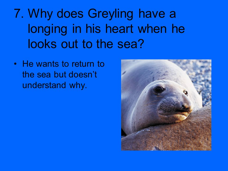 7. Why does Greyling have a longing in his heart when he looks out to the sea