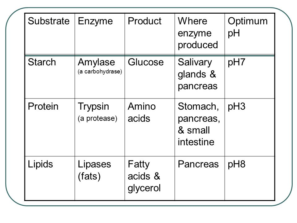 Amylase (a carbohydrase) Glucose Salivary glands & pancreas pH7