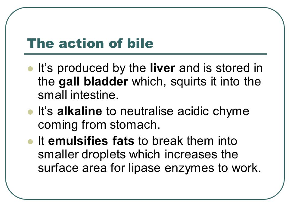 The action of bile It's produced by the liver and is stored in the gall bladder which, squirts it into the small intestine.