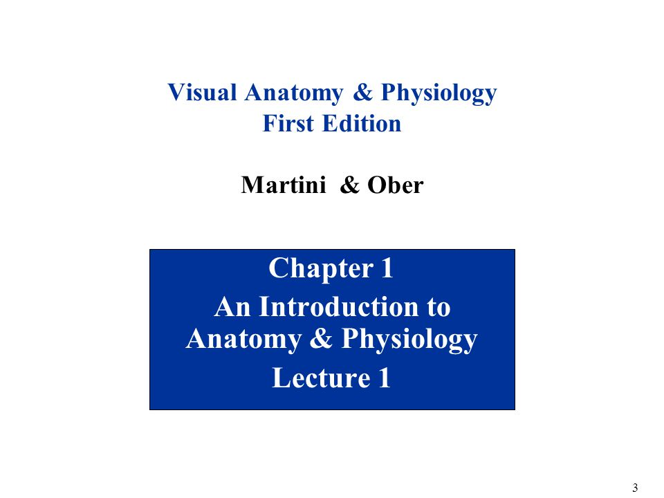 Welcome To Biology 211 Human Anatomy Physiology I Ppt Download