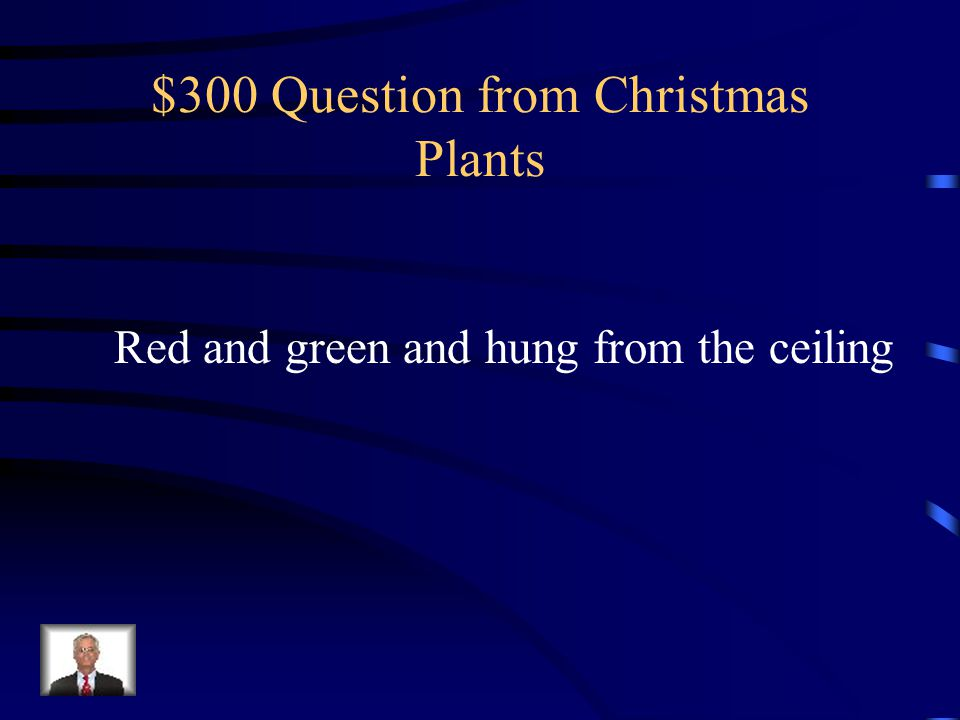 $300 Question from Christmas Plants