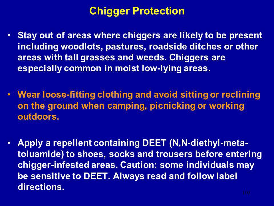 Chigger Protection