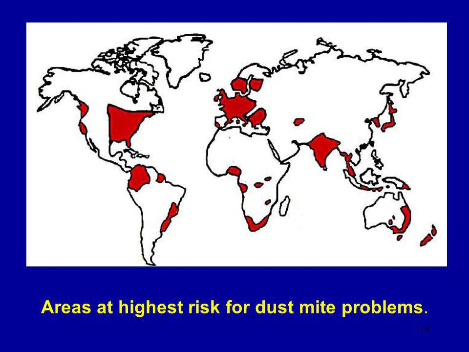 Areas at highest risk for dust mite problems.