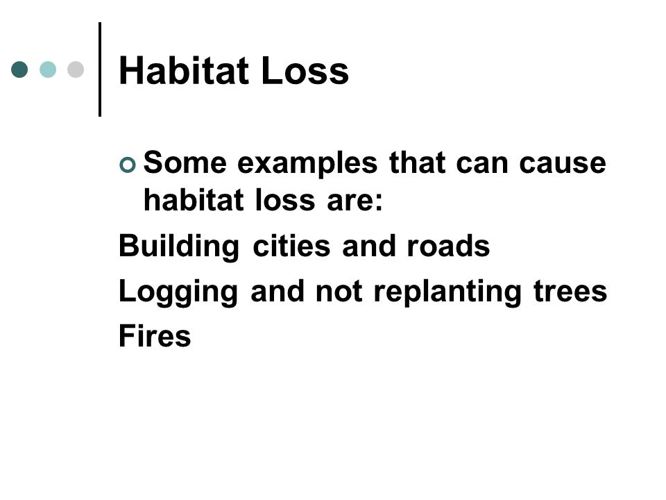 Habitat Loss Some examples that can cause habitat loss are: