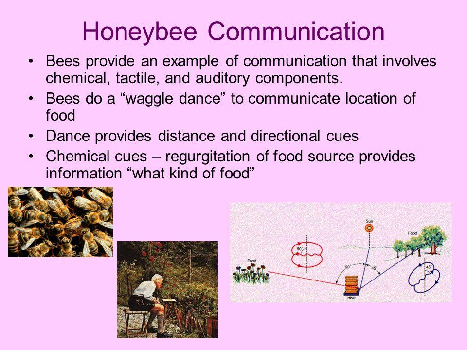 Animal communication | britannica. Com.
