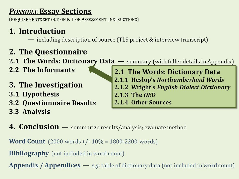 1800 word essay