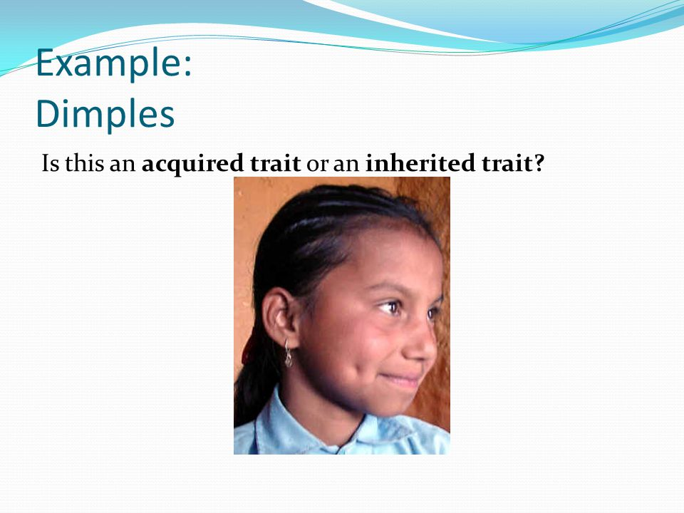 9 Example Dimples Is This An Acquired Trait Or Inherited