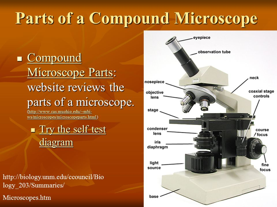 A short history of the microscope ppt video online download parts of a compound microscope ccuart Images