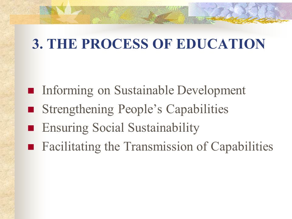 3. THE PROCESS OF EDUCATION