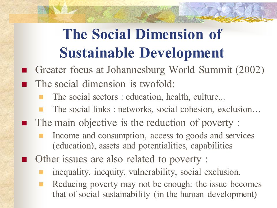 The Social Dimension of Sustainable Development