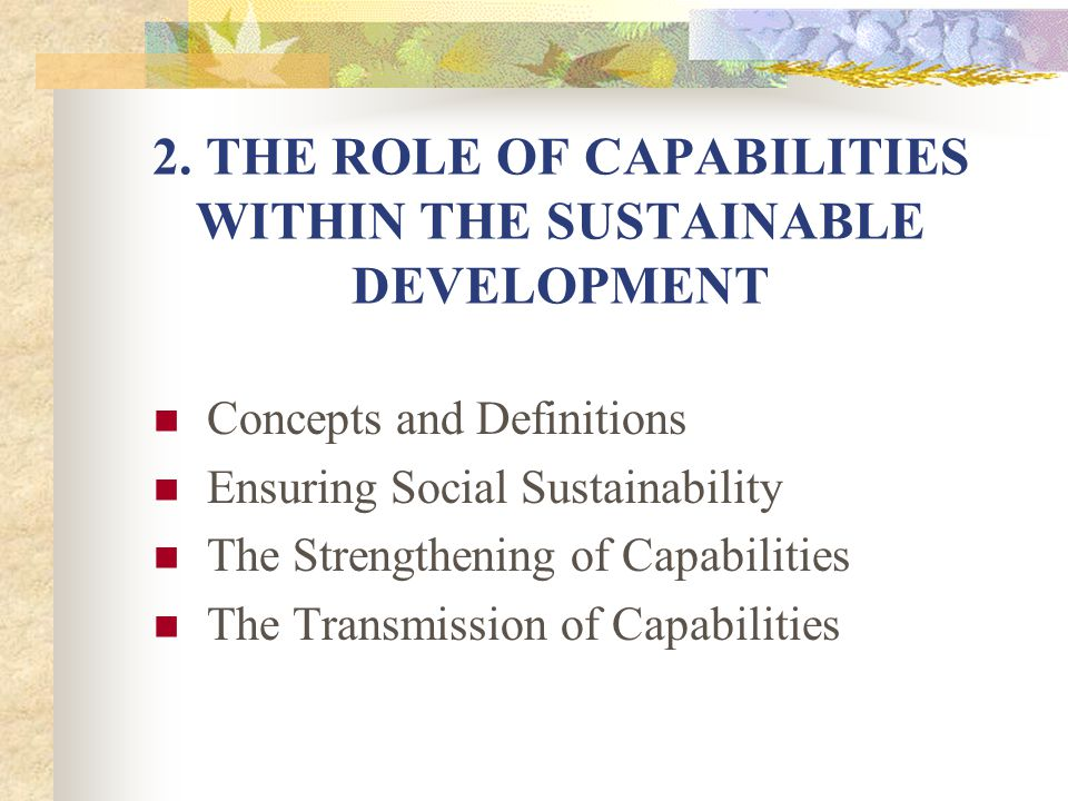 2. THE ROLE OF CAPABILITIES WITHIN THE SUSTAINABLE DEVELOPMENT