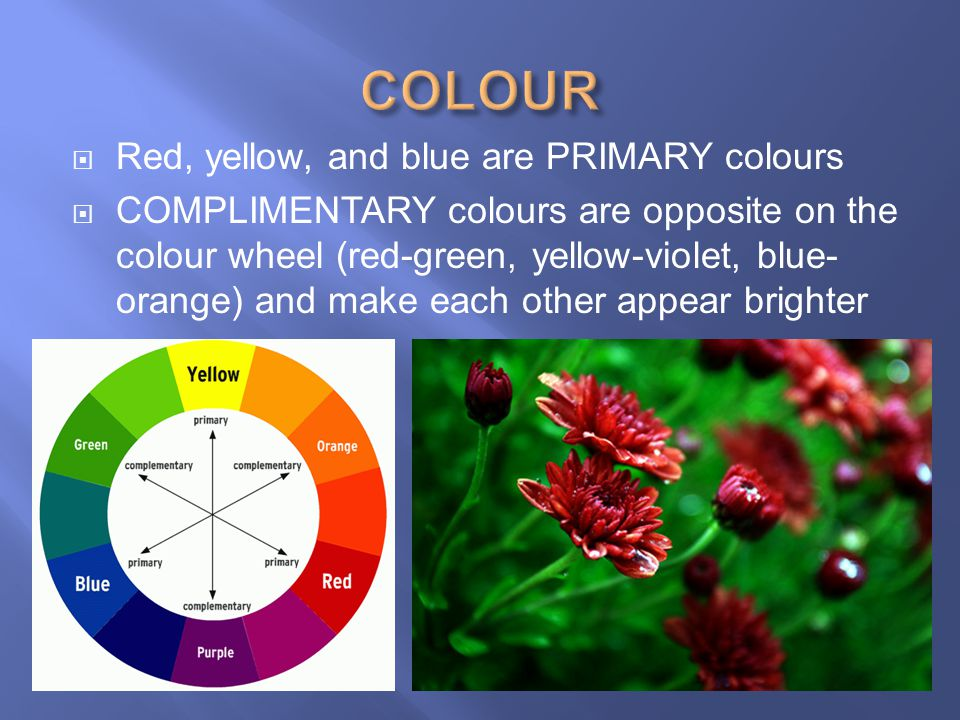 COLOUR Red, yellow, and blue are PRIMARY colours