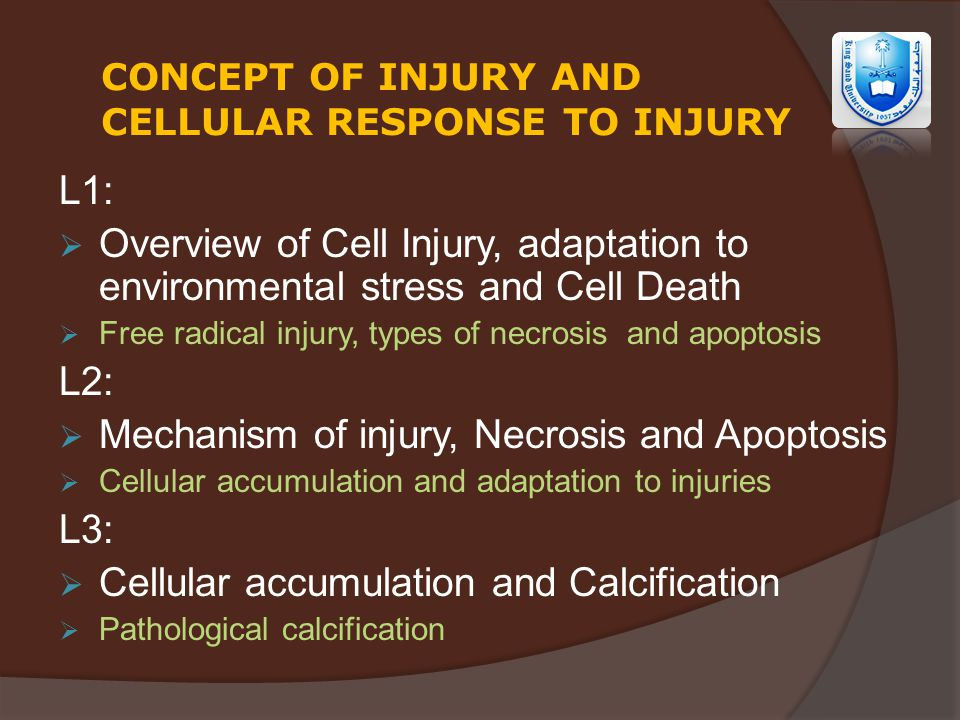 Lecture Title: Cell injury - ppt video online download