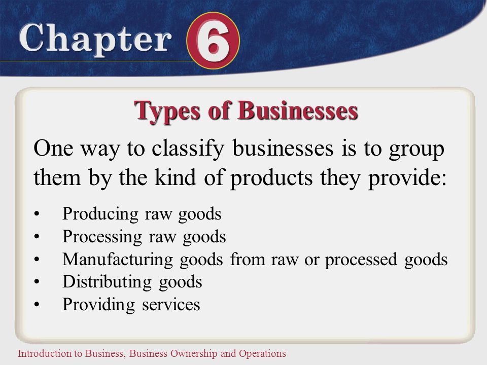 Types of Businesses One way to classify businesses is to group them by the kind of products they provide:
