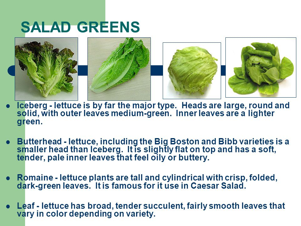 Salads Types Of Salads Ppt Video Online Download