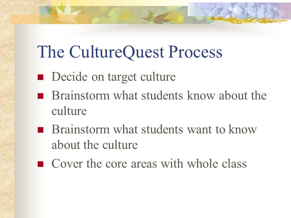 The CultureQuest Process
