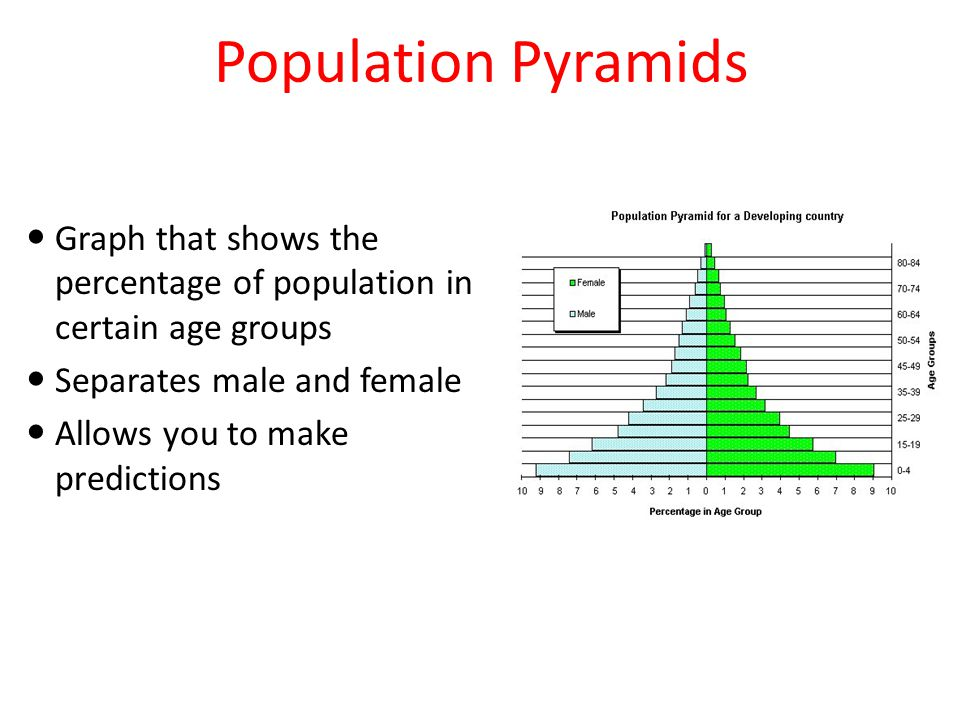 Population Pyramids Graph that shows the percentage of population in certain age groups. Separates male and female.