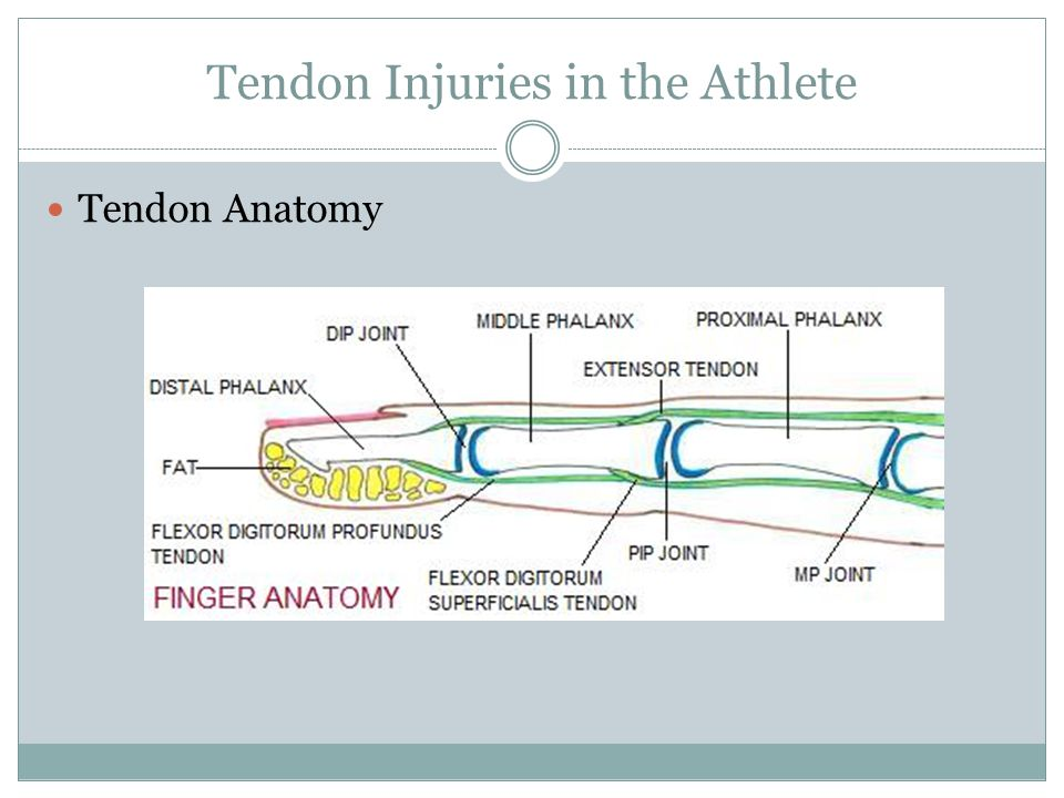 Hand Injuries in the Athlete - ppt video online download