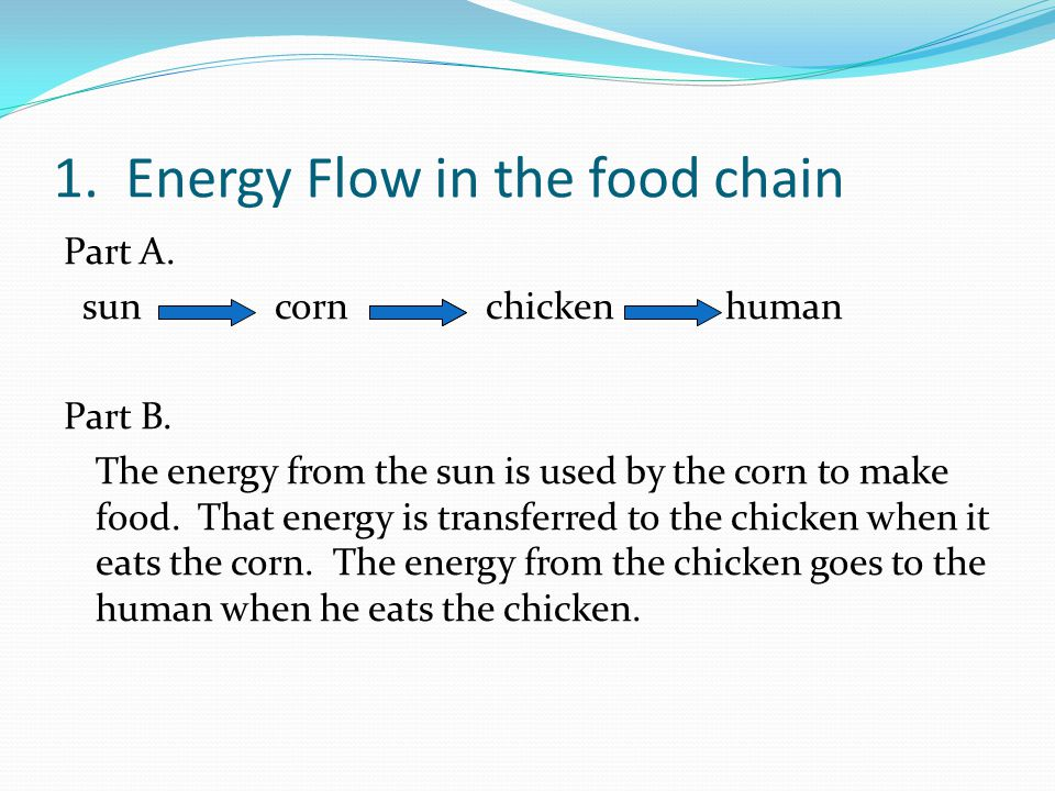 Science Focus Lesson Week 7 Ppt Download