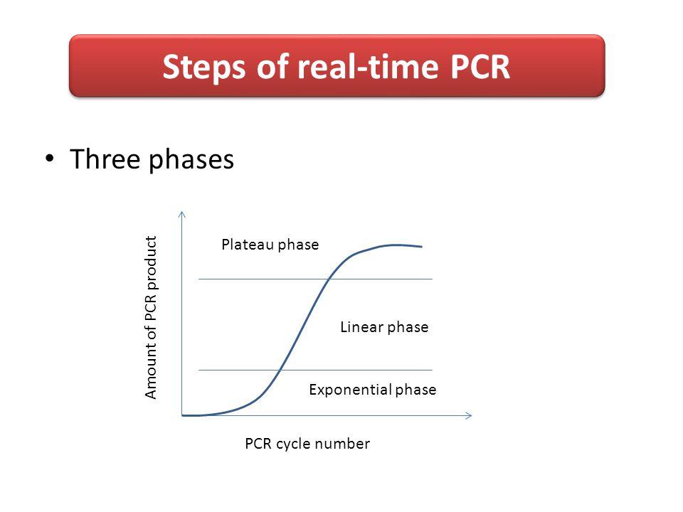 Real-Time PCR (Quantitative PCR) - ppt video online download