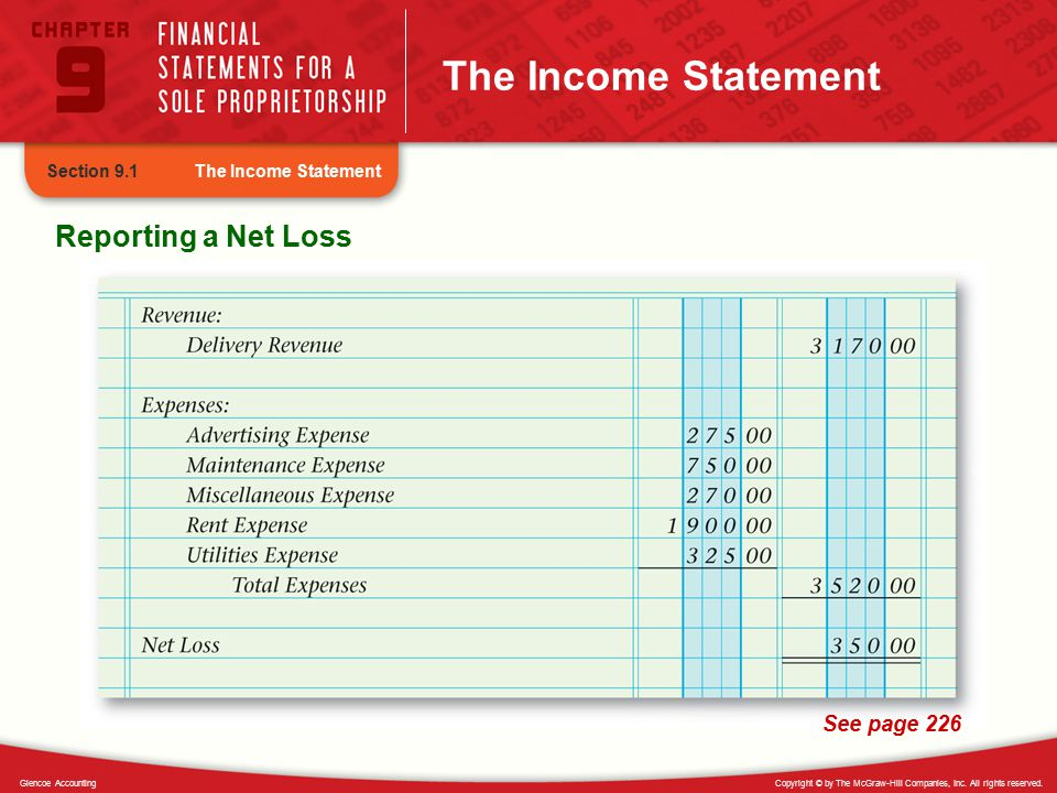 The Income Statement Reporting a Net Loss See page 226 Section 9.1