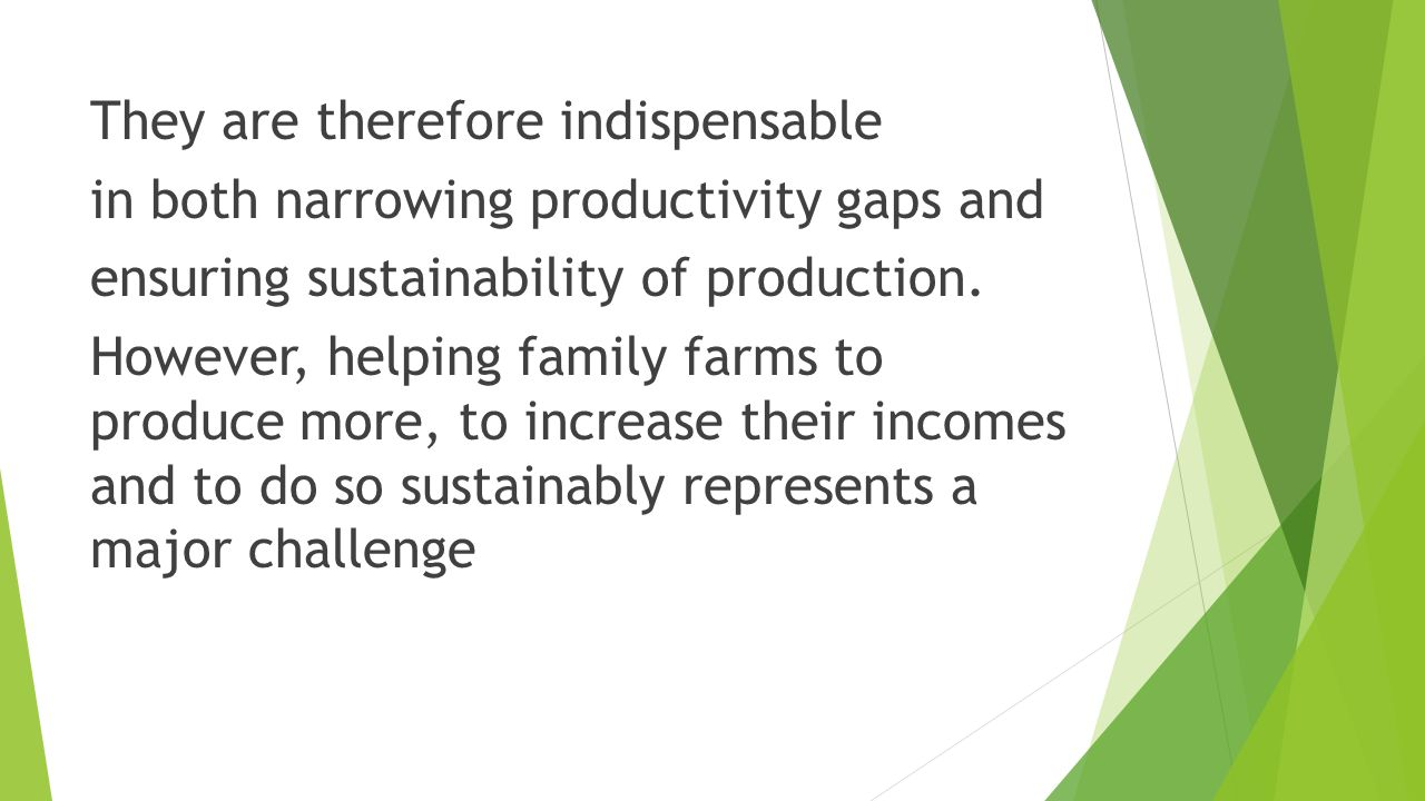 They are therefore indispensable in both narrowing productivity gaps and ensuring sustainability of production.