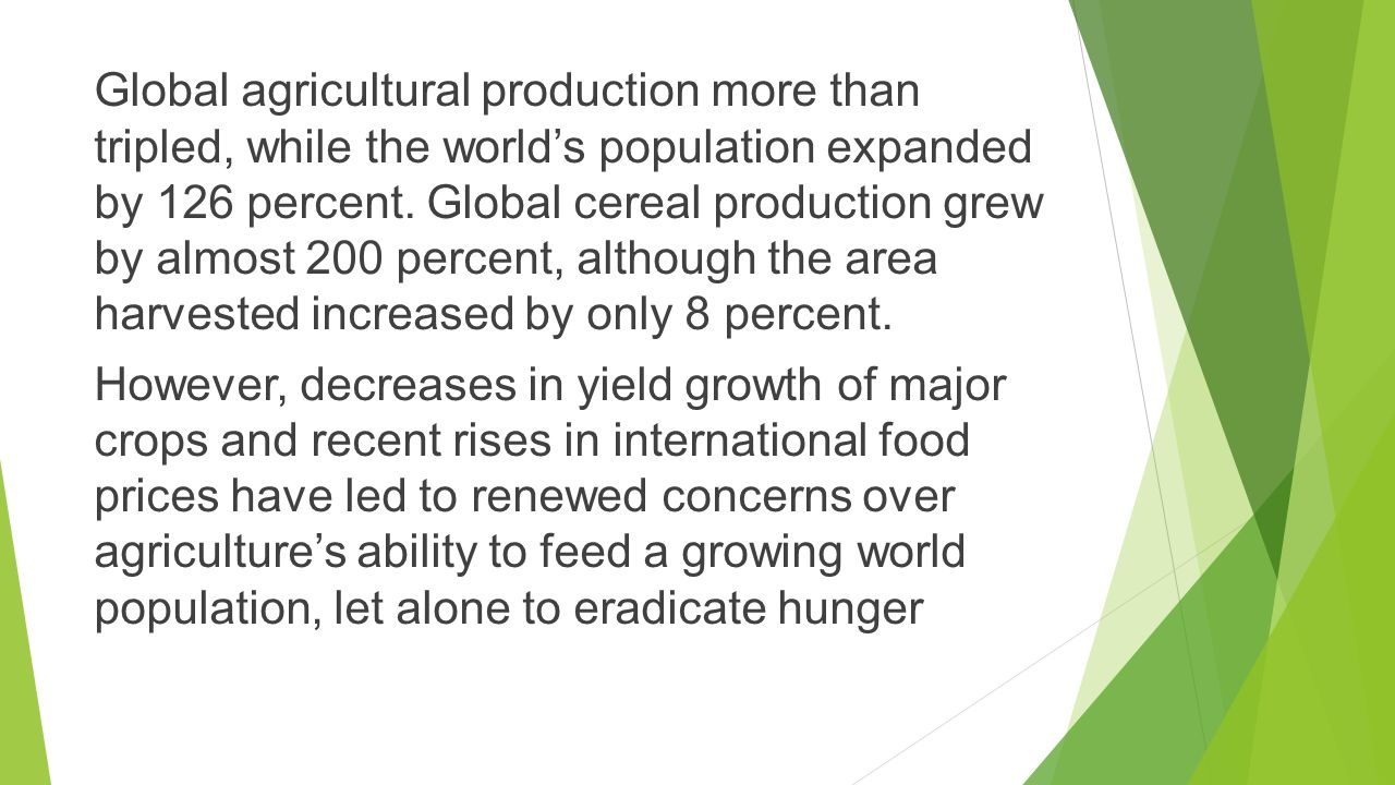 Global agricultural production more than tripled, while the world's population expanded by 126 percent.
