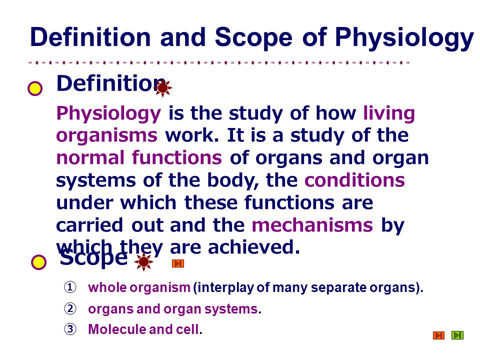 Introduction Instructor: Li Li Department of Physiology - ppt download
