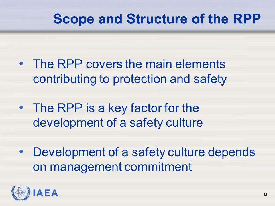 Scope and Structure of the RPP