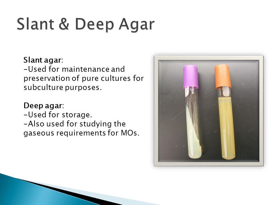 preparation of chocolate agar pdf