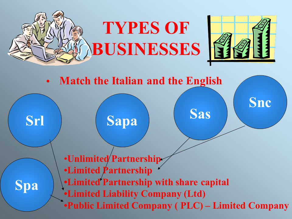 BUSINESS ENTERPRISES  - ppt download