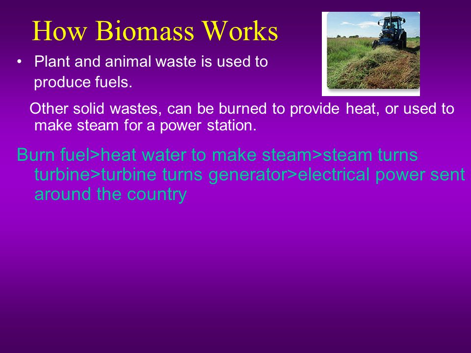 How Biomass Works Plant and animal waste is used to. produce fuels.