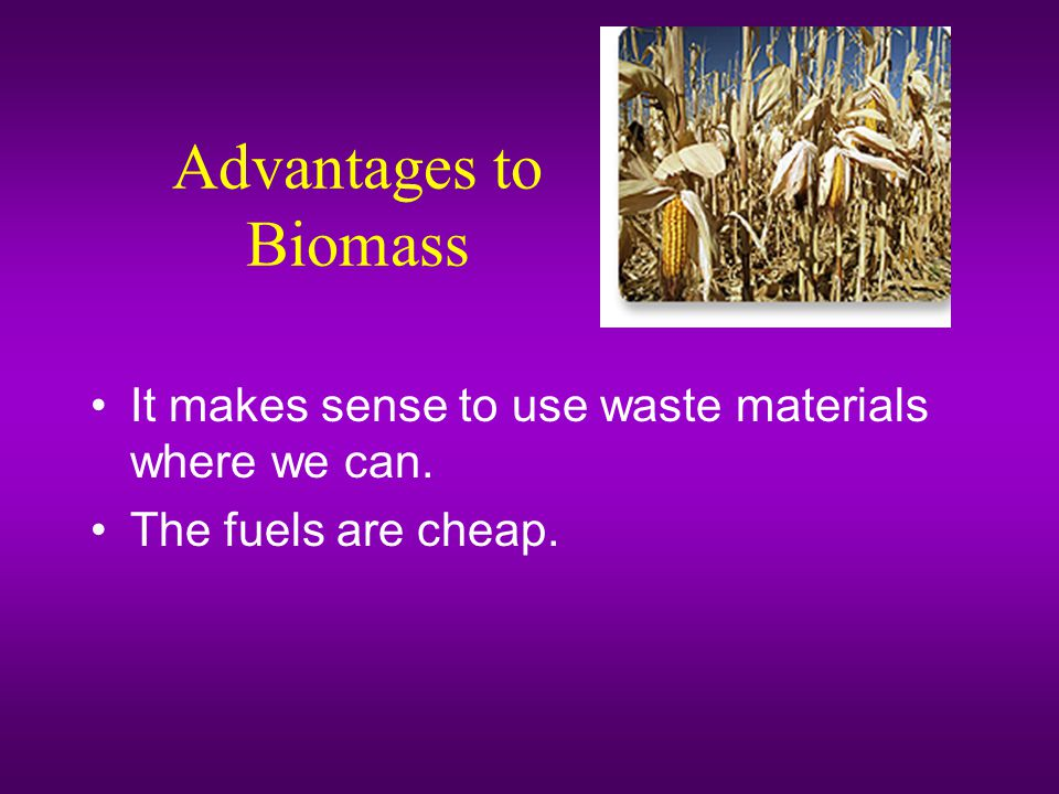 Advantages to Biomass It makes sense to use waste materials where we can. The fuels are cheap.