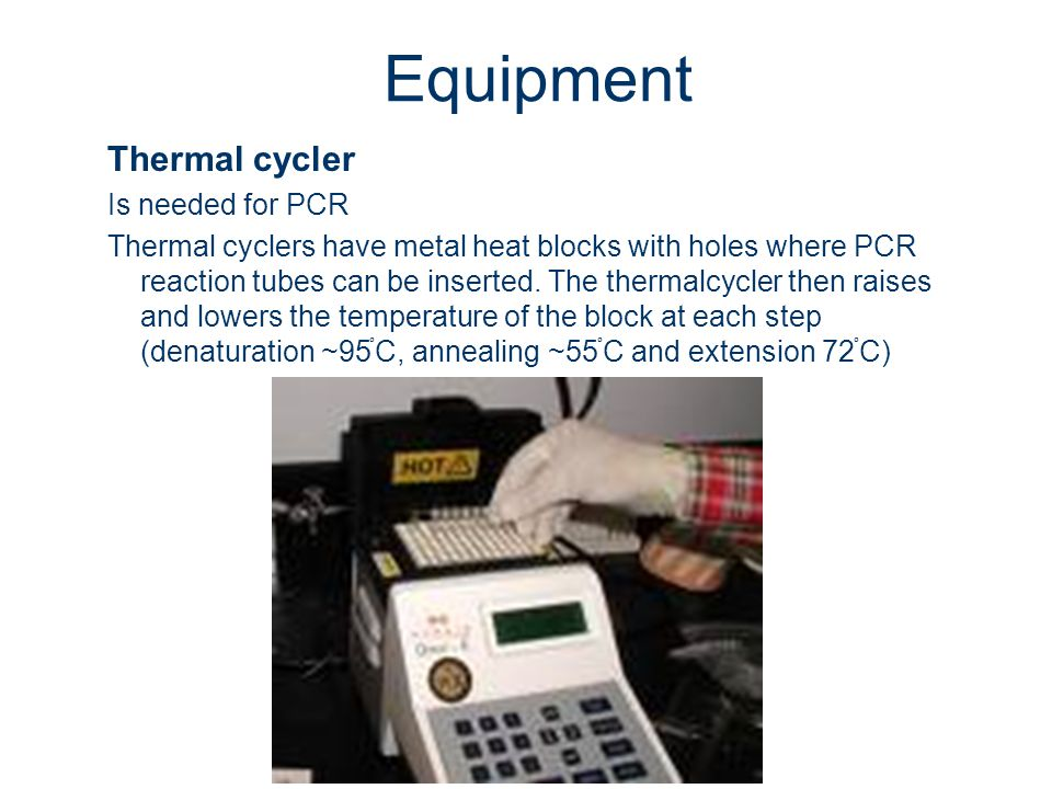 Equipment Thermal cycler Is needed for PCR