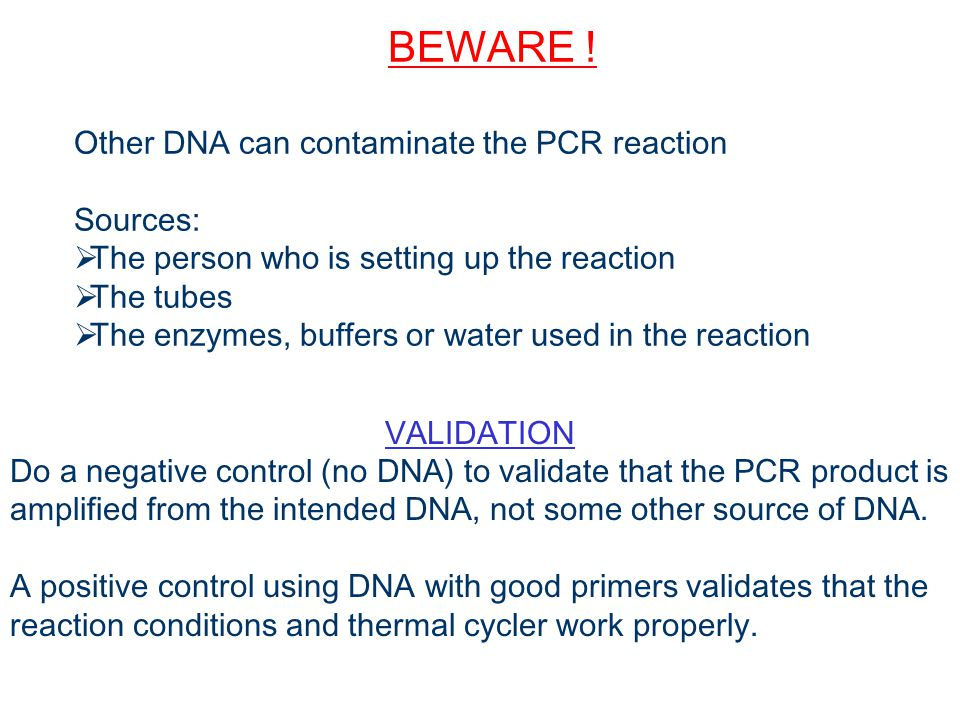 BEWARE ! Other DNA can contaminate the PCR reaction Sources: