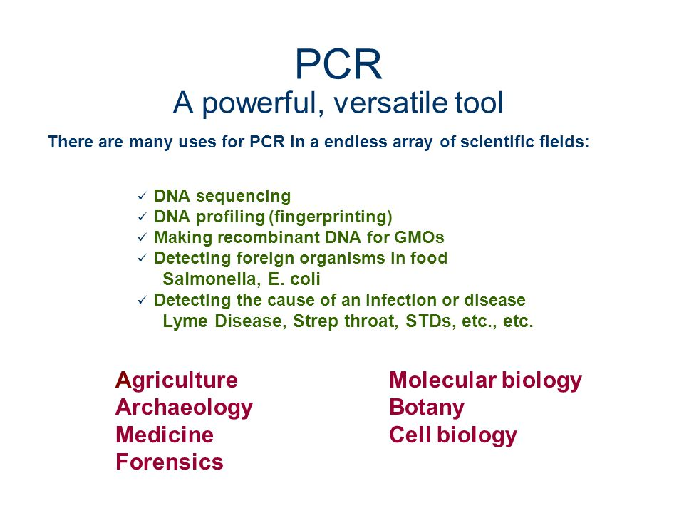 PCR A powerful, versatile tool