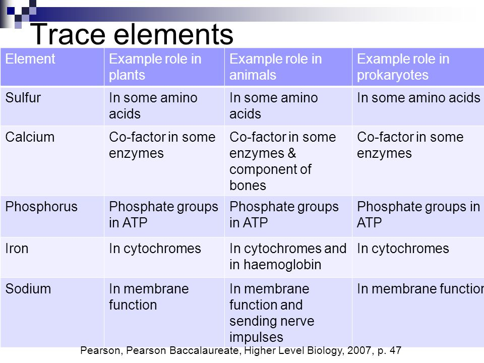 Trace Elements Element Example Role In Plants Example Role In Animals