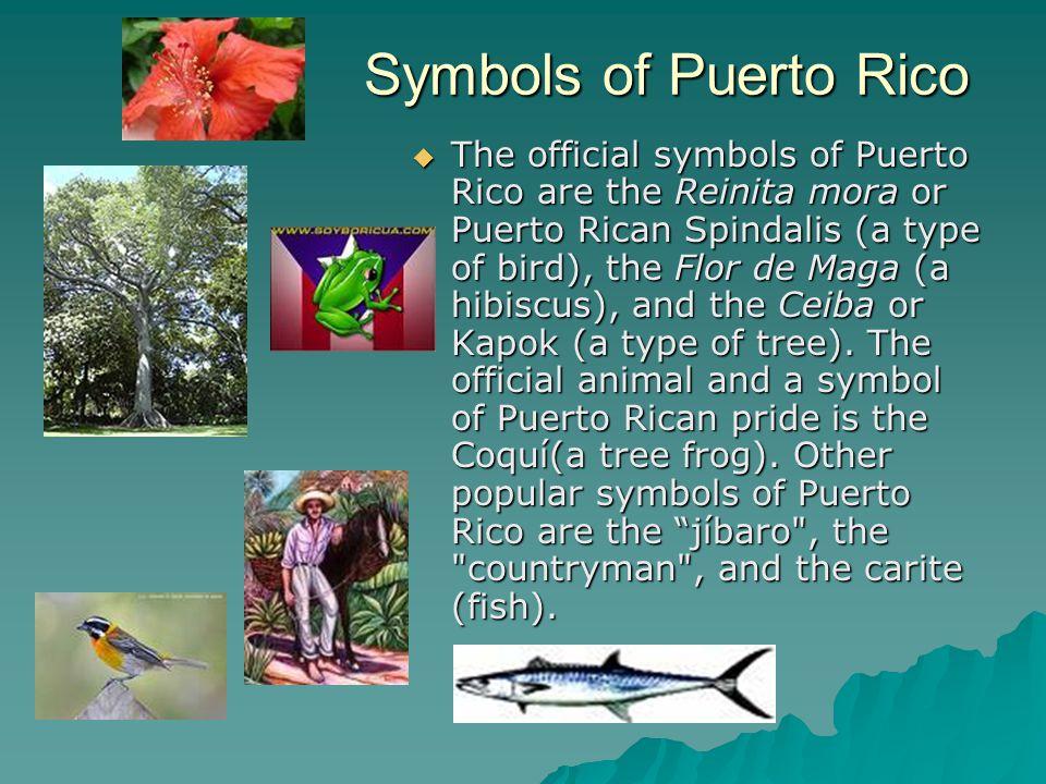Puerto Rico Ppt Video Online Download